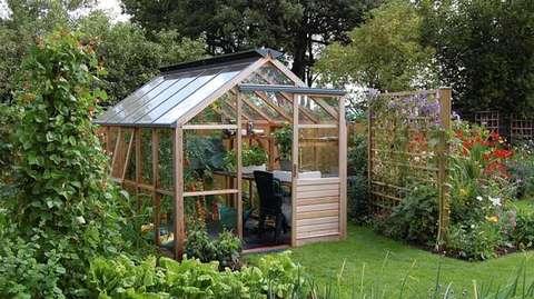 co zasadzić w szklarni ogrodowej